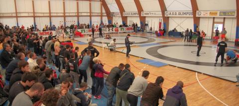 5-campionato-MMA-2014-palaolgiata